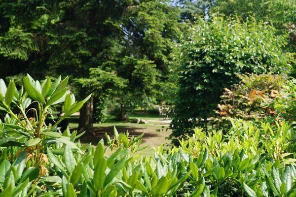 POMMEREL Garten